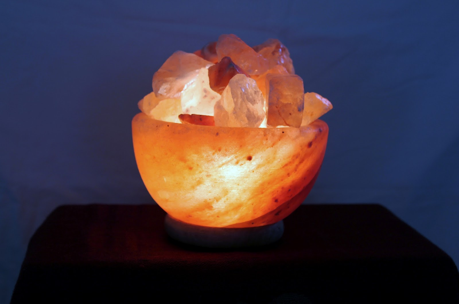 Salt Lamp n?tur Museum quality insects, butterflies and natural history collectibles ...